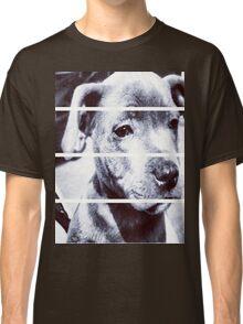 Dapper Boy Dog Classic T-Shirt