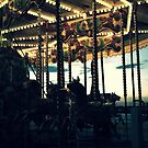 Carousel by night by Roxy J