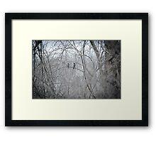 soft moments Framed Print