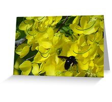 Flower And Fly - Flor Y Mosca Greeting Card