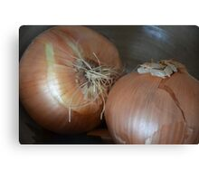 Just Two Sweet Onions... Canvas Print