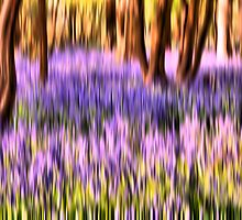 The abstract bluebell by JEZ22