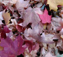 Autumn Leaves 3 Sticker