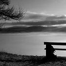 Mist, Glentress, Scottish Borders, 2005 by Iain MacLean
