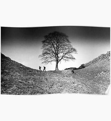Walkers at Sycamore Gap, Hadrian's Wall, Northumberland Poster