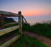 Evening Walk by Mark Bowden