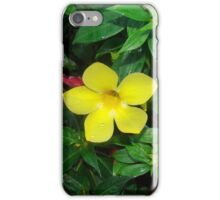 Florida flower iPhone Case/Skin