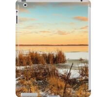 Sunset at Emiquon iPad Case/Skin
