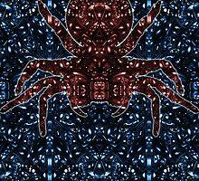 Kaleidoscopic Funnel Web - 01  by TysonLaucher