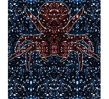 Kaleidoscopic Funnel Web - 01  Photographic Print