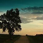 At dawn driving down a country road by Emily Barnes
