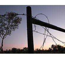 Ellendale fence at sunset Photographic Print