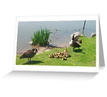 Honey, can you call the babysitter? I wanted us to make of a splash of it tonight! Greeting Card