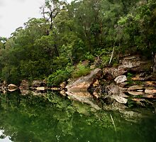 reflections at bobbin head by aurelie k