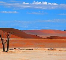 Deserted by Jill Fisher