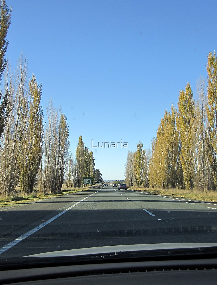 Canberra Turnoff (from Hume Hwy, NSW) by Lunaria