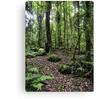 LOTR forest Canvas Print