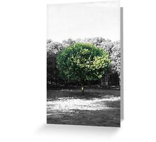 Stand Out From The Crowd. Greeting Card
