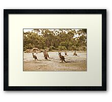 what's everybody looking at? Framed Print