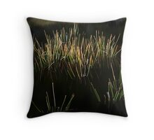 Reed Pool Throw Pillow