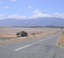 On the road to Hermanus by SharnT