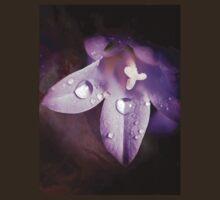 Little Bellflower by FranWalding