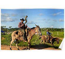 cowboys, Brazilian style Poster