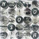NOOSA - Acrylic Skins by Vikki-Rae Burns