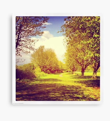 Sunny afternoon in the park Canvas Print