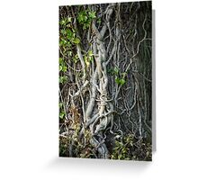 Knotted tree trunk Greeting Card