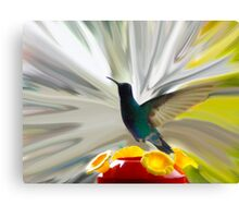Hummingbird Series VII Canvas Print