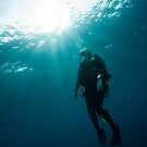 Diver Ascent by Todd Krebs