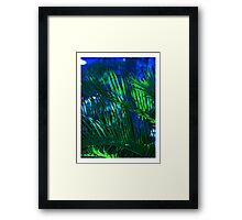 Beautiful Blue Palm Framed Print