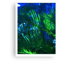Beautiful Blue Palm Canvas Print