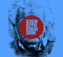 EXCOGITO ERGO SUM by eccetera