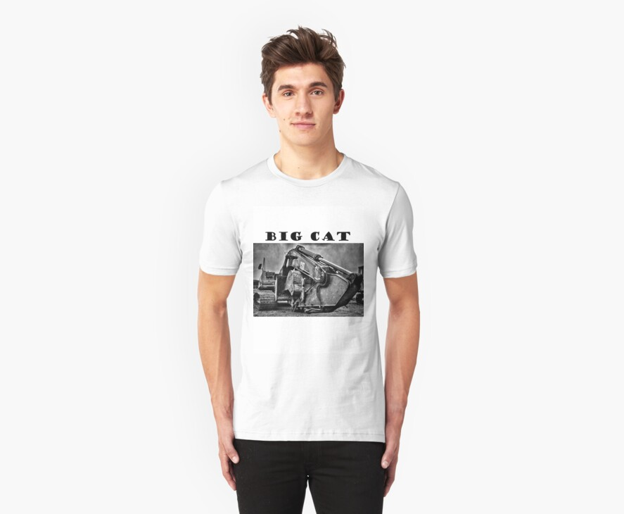 Big Cat tee by Richard Fortier
