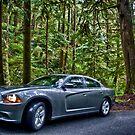 Dodge: Wild by anorth7