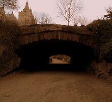 Central Park. Riftstone Bridge. by Amanda Vontobel Photography
