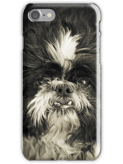 Real Character iPhone/iPod Case by Jay Taylor