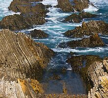rocky inlet - Montana de Oro by David Chesluk