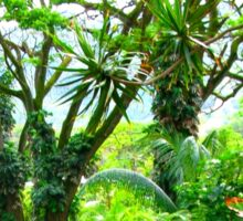 Lush Tropical Greenery Sticker