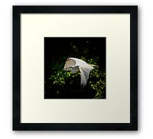 A Mother's Homecoming Framed Print