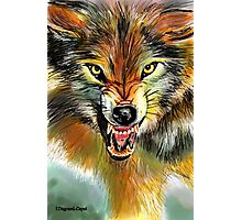 Wolfie, featured in Art Universe, Group-Gallery of Art and Photography, Best of Redbubble Photographic Print