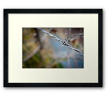 Barbed Wire I Framed Print