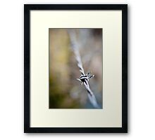 Barbed Wire III Framed Print