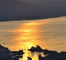 Statsraad Lemkuhl in Bergen by Algot Kristoffer Peterson