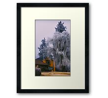 Frozen Willow Framed Print
