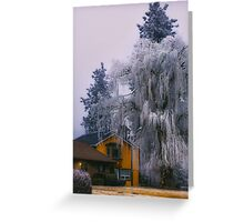 Frozen Willow Greeting Card