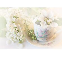 ***  AFTERNOON TEA DELIGHT *** Photographic Print