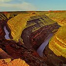 Horseshoe Bend by Peter Hammer